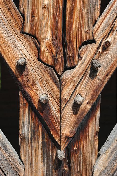 Holznagel