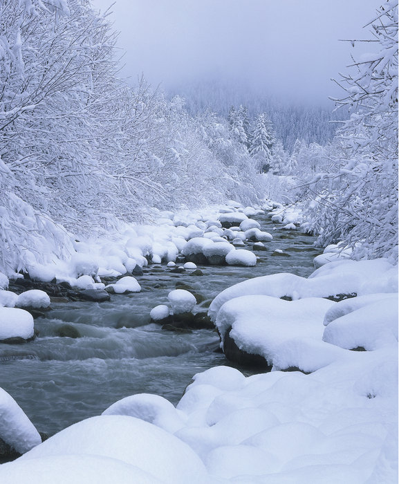 Winter Duden