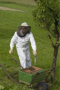 Bienenzüchter