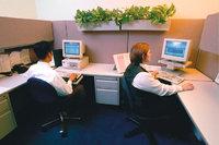 Büro - Zwei Angestellte in einem Büro