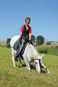 Dresseur - Ein Pferd bei der Dressur