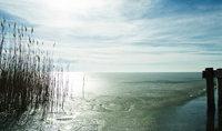 Eis - Eisdecke eines Sees