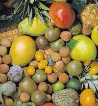 Ernährung - Verschiedene Obstsorten als gesunde Ernährung