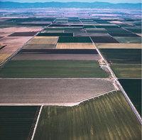 Feld - Felder von oben