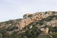 Felsrücken