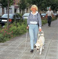 Führhund - Frau mit Blindenführhund