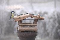 Futterhaus - Vogelhaus als Futterhäuschen