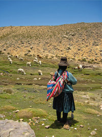Indiofrau - Indiofrau in Peru