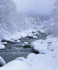 Jahreszeit - Landschaft in der Jahreszeit Winter