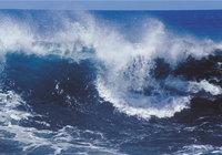 Krone - Welle mit weißer Krone