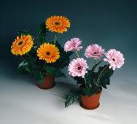 Kunstblume - Töpfe mit Kunstblumen