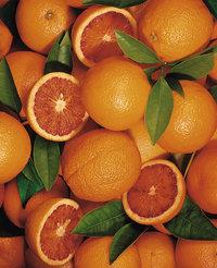 Menge - Eine Menge Orangen
