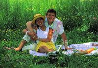 Picknick - Paar bei einem Picknick