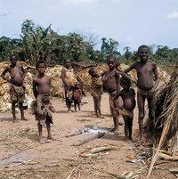 Pygmäe - Pygmäengruppe