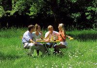 Runde - Eine heitere Runde beim Picknick