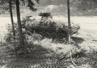 Schützenpanzer - getarnter Schützenpanzer