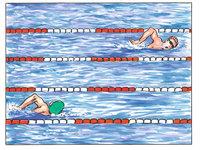 Schwimmer - Schwimmer in Schwimmbahnen