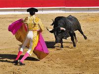 Stierkämpfer - Stierkämpfer und Stier in der Arena