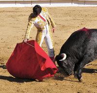 Tuch - Stierkämpfer mit rotem Tuch