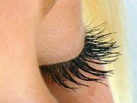 Wimperhaar - Augenlid mit Wimpern